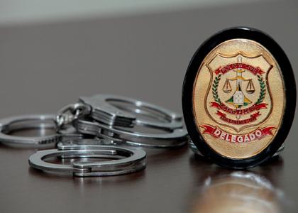Mens legislatoris e medidas protetivas pelo delegado de polícia