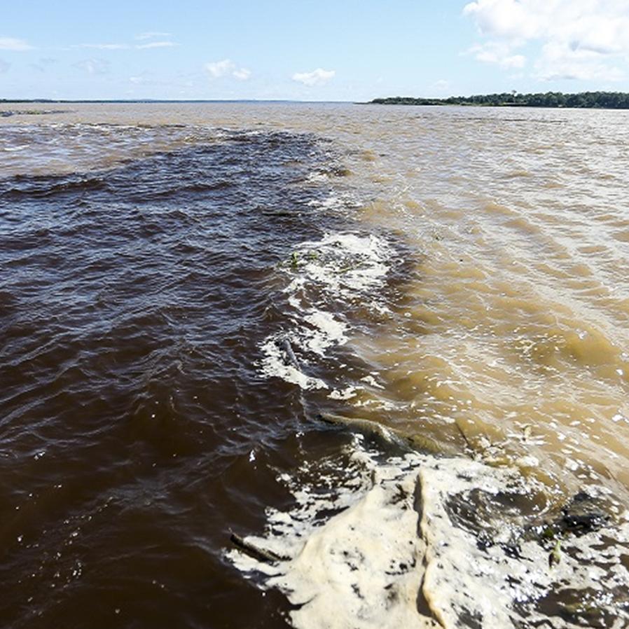 STF suspende por 60 dias ação sobre encontro dos rios Negro e Solimões