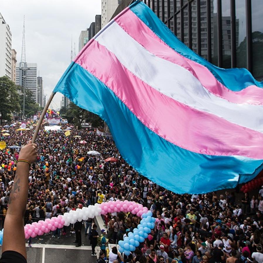PL propõe cota de transexuais em empresas ligadas ao Poder Público