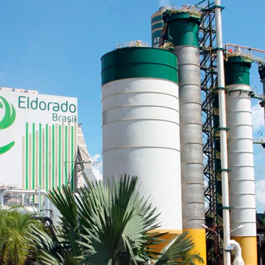3x0: Paper Excellence vence litígio de controle da Eldorado Brasil
