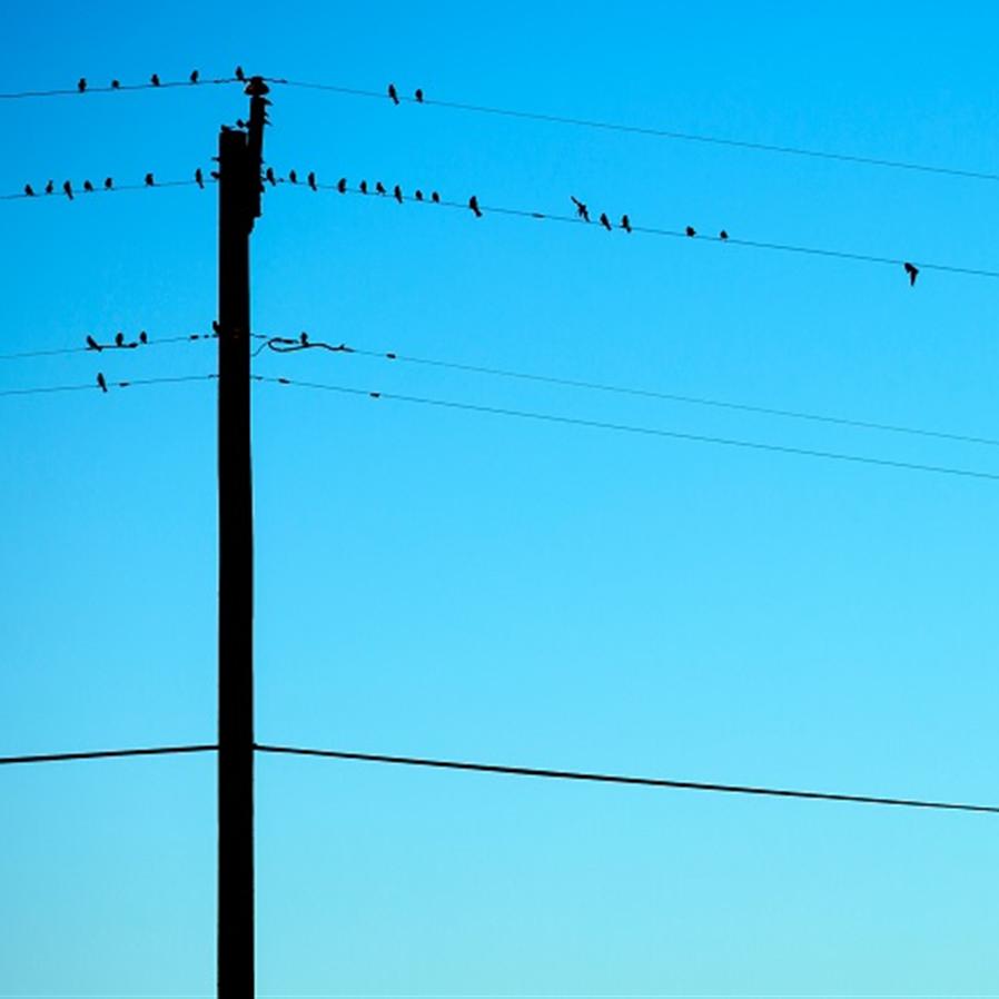 Lei do DF que regula corte de energia e telefonia é inconstitucional
