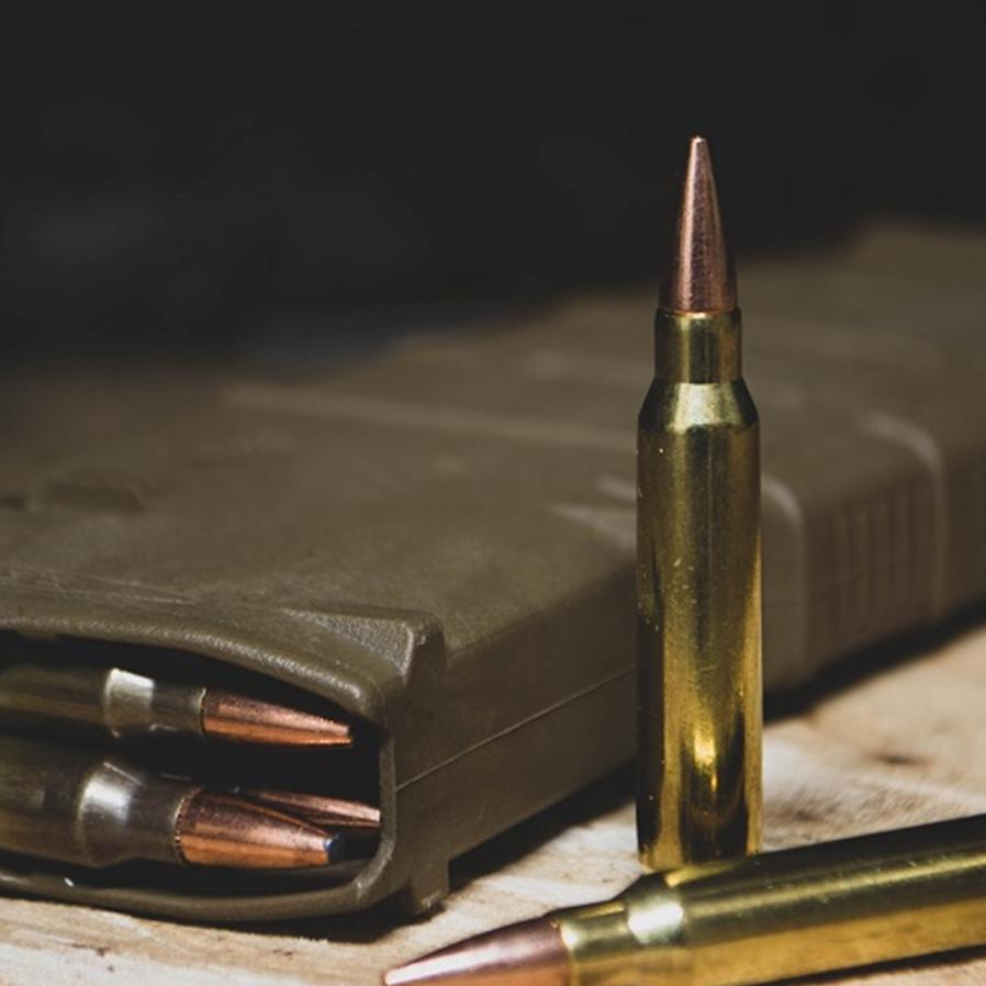 STF derruba restrições para porte de arma para guardas municipais