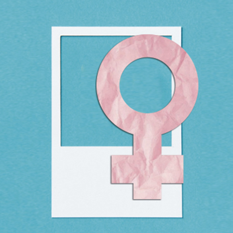 Mulheres advogadas e pretas - paridade numérica em busca de representatividade