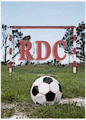 RDC; Licitação; Copa; Burocracia; Administração Pública;