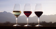 Vinho colonial: regulamentação contribui para agregação de renda e geração de empregos no meio rural