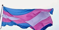Lei Maria da Penha protege transexual que não realizou cirurgia de mudança de sexo