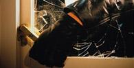 Seguradora que recusou cobertura por furto indenizará loja em danos morais