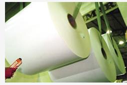 Rio Grande do Sul; investimento; papel; celulose