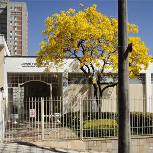 O florido ipê amarelo faz do escritório de Sorocaba/SP um belo cartão postal.