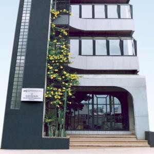 Subindo pelos andares do pequeno prédio, a trepadeira de flores amarelas colore a fachada do escritório de Cruz Alta/RS.