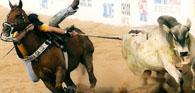 Vaqueiros vão a Brasília em defesa da vaquejada