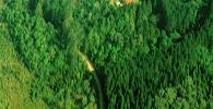 EPM celebra convenio com Curucutu Parques Ambientais