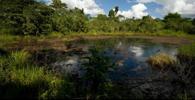 Chevron pede que STJ não valide decisão que a condenou por danos ambientais