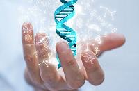 INPI emitirá exigência sobre acesso ao patrimônio genético