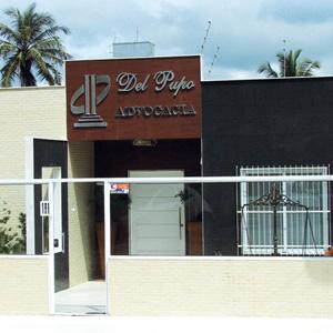 Ao fundo do escritório da praiana Guarapari/ES, os coqueiros decoram o ambiente.