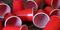 Proibição de fornecimento de descartáveis plásticos na capital paulista é constitucional