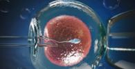 Por falta de previsão contratual, plano de saúde não é obrigado a custear fertilização in vitro