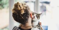 Projeto regula guarda compartilhada de animais após separação
