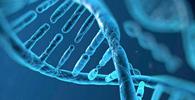 Ministério da Justiça regulamenta inclusão de dados em banco genético