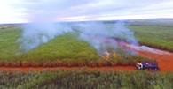 TJ/SP anula auto de infração contra Usina por suposto benefício de queima de cana