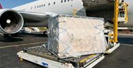 Tese do STF sobre extravio de bagagem não é aplicável a transporte de cargas