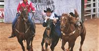 Justiça autoriza prova Bulldog em Festa do Peão de Barretos