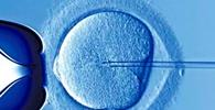 Audiência Pública debate implantação de embriões gerados para salvar vida do irmão