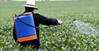 Maioria do STF suspende portaria que prevê aprovação tácita de agrotóxicos