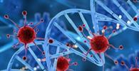 TJ/PA adota medidas contra coronavírus