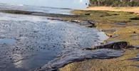 PF deflagra operação contra suspeitos de derramamento de óleo no Nordeste