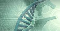Com base em laudo de DNA, STF absolve condenado por estupro